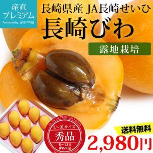 びわ 長崎びわ 秀品 約500g L〜3Lサイズ 8〜12玉 露地栽培 化粧箱 長崎県産