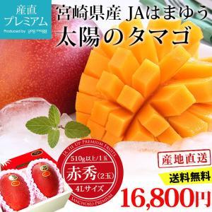 宮崎マンゴー 太陽のタマゴ 赤秀 4Lサイズ (510g以上)×2玉 宮崎県