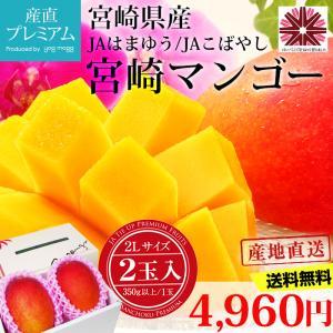 完熟宮崎マンゴー 2Lサイズ以上 (350g以上)×2玉 宮...
