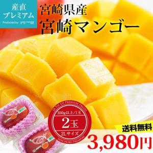 母の日ギフト マンゴー 完熟宮崎マンゴー 2Lサイズ 350...