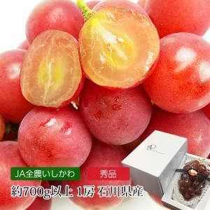 ぶどう ルビーロマン 秀品 約700g以上 1房 石川県
