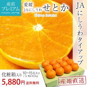 みかん せとか 愛媛県 ギフト 秀品 3kg L〜3Lサイズ...