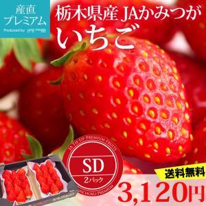 イチゴ とちおとめ SD 2パック 栃木県