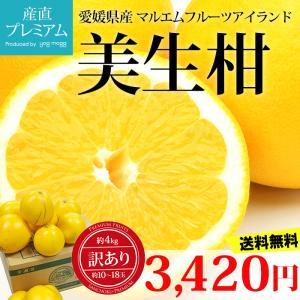 柑橘王国愛媛県のマルエムフルーツアイランドが自信を持ってお勧めする文旦のこどもです。 外観は美しいレ...