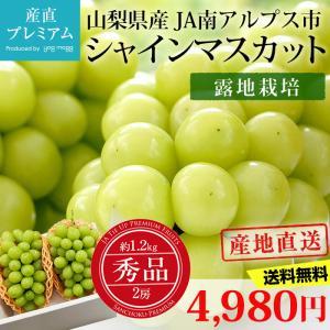 ぶどう シャインマスカット 秀品 約1.2kg(約600g×2房) 限定100ケース 露地栽培
