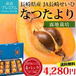 びわ なつたより 長崎びわ 約250g×4パック 12〜16粒 露地栽培 長崎県産