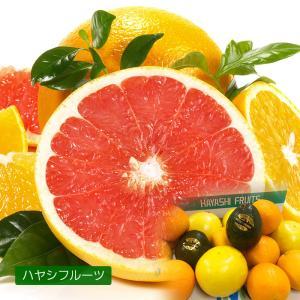 フルーツ詰め合わせ ハヤシフルーツ セット 果物 盛り合わせ ギフト