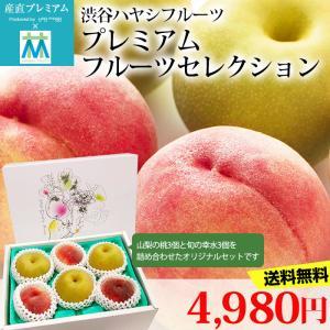 フルーツ詰め合わせ ハヤシフルーツ 桃 梨 各3個(合計6個)セット
