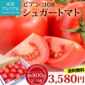 フルーツトマト 高知県 トマト ビアンコ08 シュガートマト...