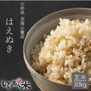 お米 玄米 30kg はえぬき 令和2年産 山形 庄内 送料無料 農家直送
