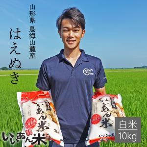 令和元年産 いいあん米 はえぬき 白米 5kg 山形 庄内 米 お米