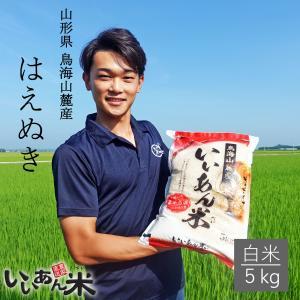 令和元年産 いいあん米 はえぬき 白米 10kg (5kg×2) 山形 庄内 米 お米