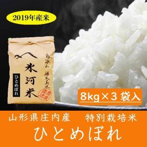 令和元年産 ひとめぼれ 玄米 8kg×3袋入 特別栽培米 山形県産 庄内産 農家直送 米 お米
