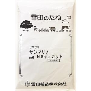 【アウトレット品】ヒマワリ サンマリノ 品種:NSデュカット 500g【2021年3月期限】在庫調整...