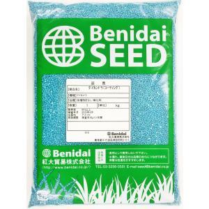 ダイカンドラ種子(コート種子)1kg・約1L グランドカバーの種