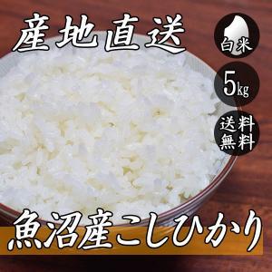 新米 お米 5kg 魚沼産 コシヒカリ 5kg×1袋 送料無料 令和2年産 米 白米|yoita-kawasyou
