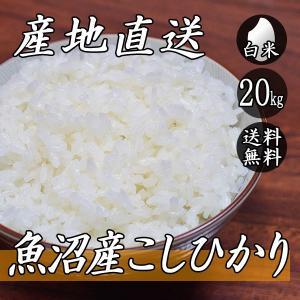 新米 お米 20kg 魚沼産 コシヒカリ 5kg×4袋 送料無料 令和2年産 米 白米|yoita-kawasyou