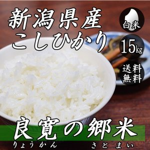 新米 お米 15kg 新潟産 コシヒカリ 良寛の郷米 5kg×3袋 送料無料 令和2年産 米 白米|yoita-kawasyou