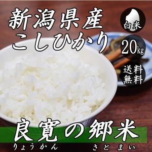 新米 お米 20kg 新潟産 コシヒカリ 良寛の郷米 5kg×4袋 送料無料 令和2年産 米 白米|yoita-kawasyou