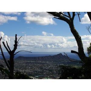 Hawaii ハワイ タンタラスの丘(No.2) 1260pix×934pix|yojigon
