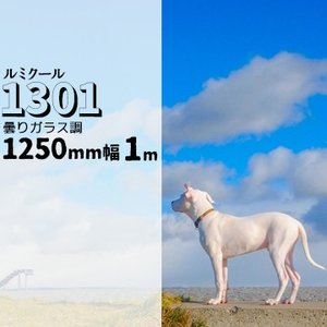 ガラスフィルム ルミクール 1301 曇りガラス調 幅 1250mm 長さ 1m 窓ガラス ウィンドーフィルム|yojo