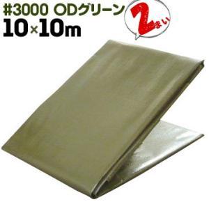萩原工業 HAGIHARA #3000 ターピーODグリーンシート 10m×10m 2枚 山間部、緑地帯使用に適した景観保護シート ターピーシート|yojo