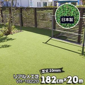 サンキャスト KOZAI ワイエーチェア SH45cm ブラック 3OC512/ベージュ 3OC513 幅55cm 奥行54cm 高さ77cm|yojo