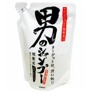 地の塩社 男のシャンプー 詰替用250ml 短髪用・石けんタイプ|yoka1
