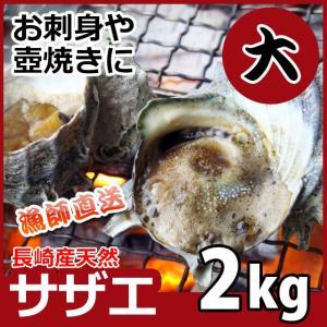 産直 天然サザエ 大サイズ 計2kg 天然モノをプロが厳選しました!活さざえ プレゼント さざえ バーベキュー BBQ お祝い|yokasakana