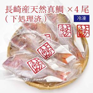ご自宅用 長崎産天然真鯛4尾(下処理済/急速冷凍済) 煮付けに!焼き魚に![内食まとめ買い] よか魚丸得|yokasakana
