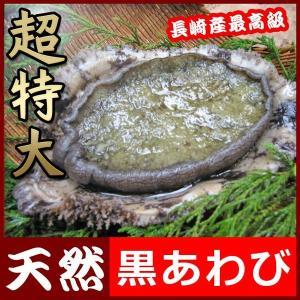 超特大黒アワビ 500g前後1枚 送料無料 レア食材!届いてビックリのサイズ yokasakana