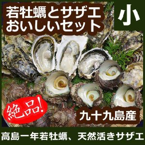 よか魚.com - 高島一年若牡蠣|Y...