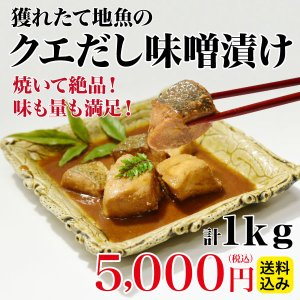 【送料込み】 幻のクエだし味噌漬け詰合せ たっぷり計1kg(10袋入) ギフト まとめ買い|yokasakana
