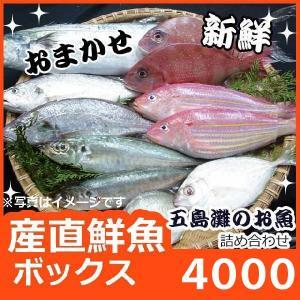 獲れたての鮮魚の中で、その日その日で質が高くお値打な鮮魚を タップリつめました。 新鮮!産地直送!お...
