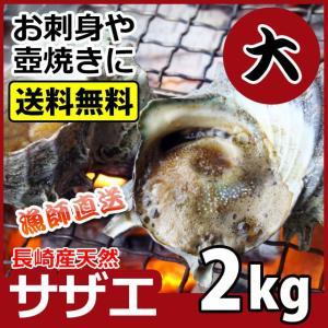 産直 天然サザエ 大サイズ 計2kg 天然さざえをプロが厳選しました 送料無料 バーベキュー BBQ 贈答 お返し お祝い 誕生日 ギフト|yokasakana