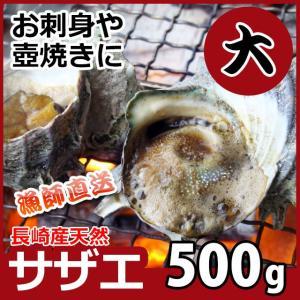 産直 天然サザエ 大サイズ 計500g 長崎産の質の高い活さざえ 天然モノをプロが厳選しました 同梱 アワビ BBQ|yokasakana