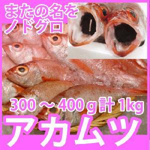 天然高級鮮魚 のどぐろ(アカムツ) 計1kg(300〜400g前後) 脂の滴るとろける旨さの高級魚をご自宅で 九十九島鮮魚 yokasakana