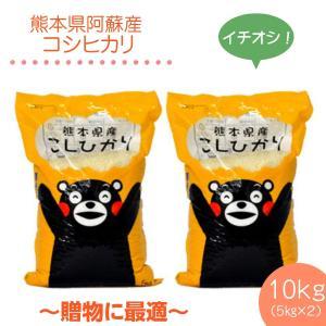 平成29年 熊本県阿蘇産 コシヒカリ精白米10kg(5kg×...