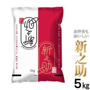 新米 29年度 新之助 5kg 新潟ブランド米 (新潟米 お...