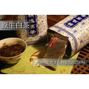 福鼎産 原生白茶(自然茶)|yokohama-tg