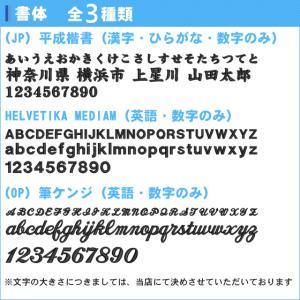 【名入れ無料】 シューズケース シューズ袋 ス...の詳細画像2