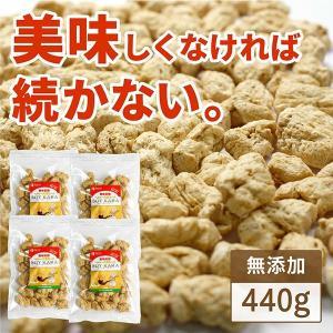 大豆ミート 4個セット 送料無料 唐揚げ ブロック 大豆のお肉 SOYKARA ベジタリアン 食物繊維 440g|yonekichi