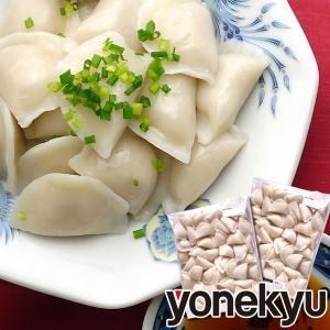 お取り寄せグルメ 国産豚肉 使用 水餃子2袋 ハロウィン ディナー オードブル 人気 2019 ご飯のお供 餃子 ギョウザ スープ 冷凍食品 中華点心|yonekyu