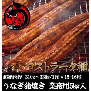 極太うなぎ蒲焼き17〜18尾入・5kg 業務用・中国産・鰻・...