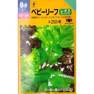 【ベビーリーフ】レタスミックス8種類【中原採種場】(20ml)野菜種[春まき][秋まき]