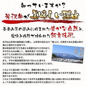 米沢牛サーロインステーキ  250g2枚(2人前) 【冷蔵便】 yonezawagyu029 02