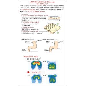 カリモク 本革ソファー ZU48 2点セット 3P&サイドテーブル 送料無料|yorokobi|03