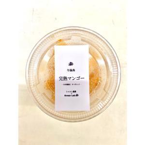 与論島産オーガニック冷凍完熟マンゴー|yoron-hana