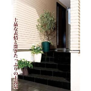 フレグラーポット 18型 お買い得5個セット/ポット・鉢|yorozuya-souko|05