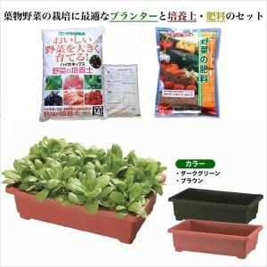 しゅうかく菜560型葉物野菜お買い得野菜の培養土・肥料セット|yorozuya-souko